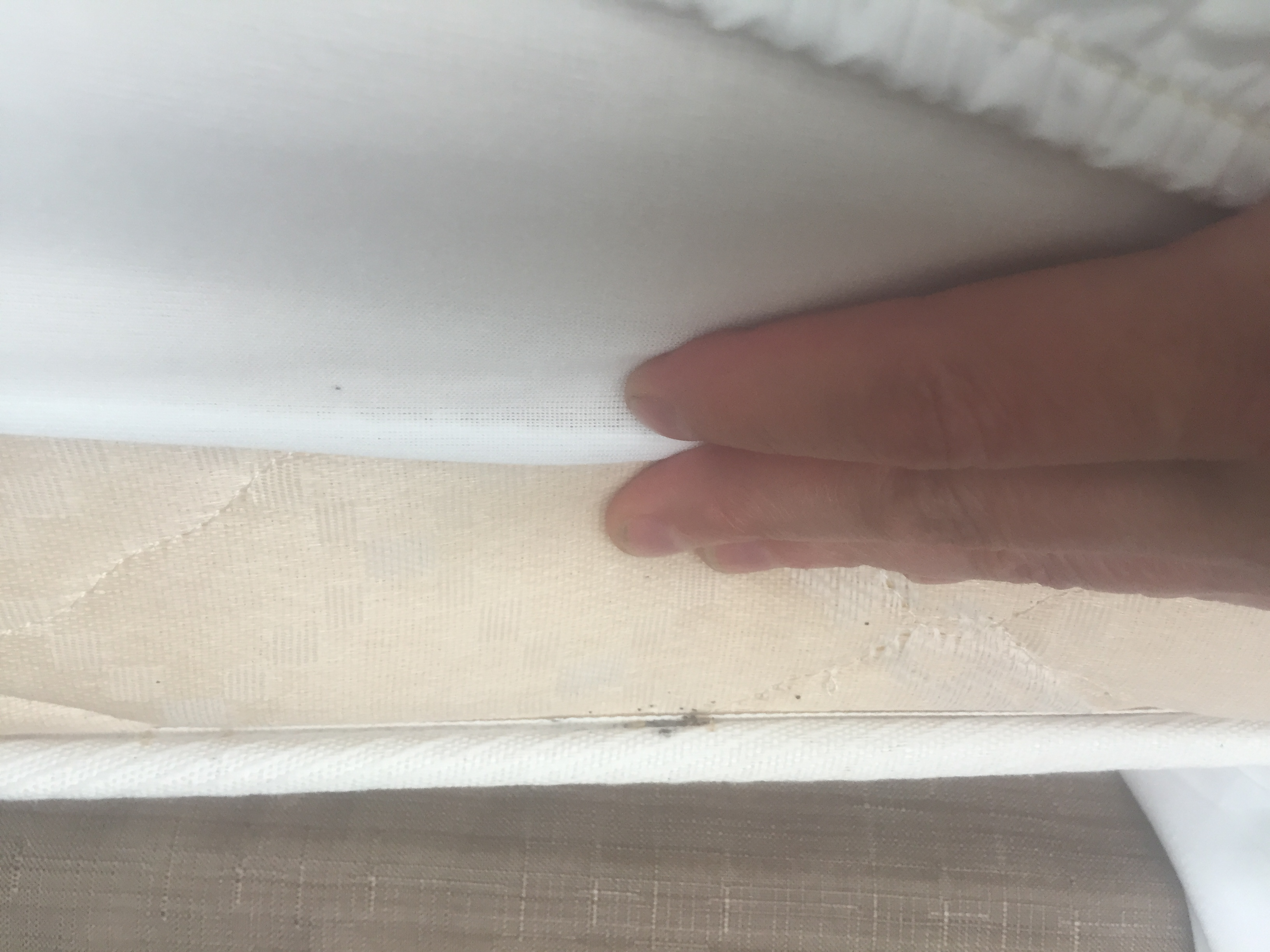 how to search for bed bugs in a hotel